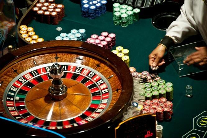 Casinoper Kazandıran Köpek Yarışı Taktikleri Nedir